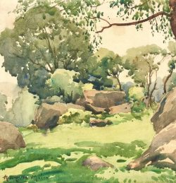 Trees and Rocks by Harry DeMaine