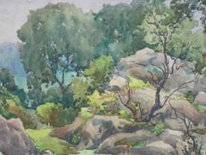 Bare Tree in Rocky Landscape by Harry DeMaine
