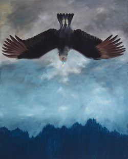 Falling Black Vulture by Michael Francis Reagan