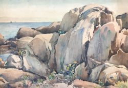 Flowers Among the Rocks by Harry DeMaine