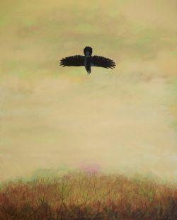 Falling American Crow by Michael Francis Reagan