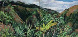 Cloud Forest at La Florida, Ecuador by Elsie Dinsmore Popkin (1937-2005)