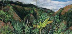 Cloud Forest at La Florida, Ecuador by Elsie Dinsmore Popkin