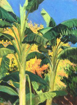 Untitled by Elsie Dinsmore Popkin (1937-2005)