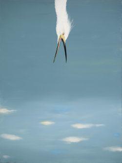Falling Snowy Egret by Michael Francis Reagan