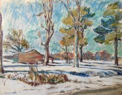 Snow, Pitt County by Sarah Blakeslee