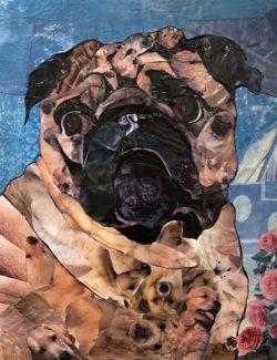 Bull Dog by Marjorie Pesek