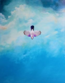 Falling Euasian Jay by Michael Francis Reagan