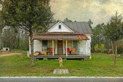 Guarding the Homeplace in Nash County by Watson  Brown
