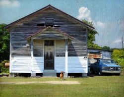 Hound Dog and Schoolhouse by Watson  Brown