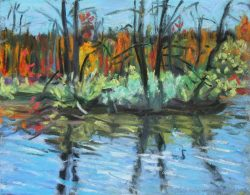 The Pond at Sapsucker Woods, Cornell by Elsie Dinsmore Popkin