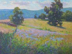 Cornflower Field by Julia Lesnichy