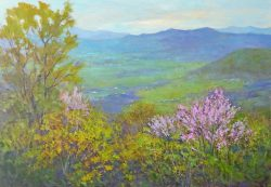 Redbuds in the Blue Ridge Mountains by Julia Lesnichy