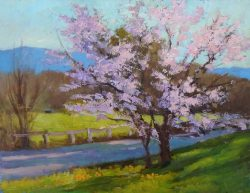 Wild Cherry Tree Before the Sunset by Julia Lesnichy