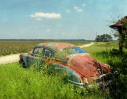 Lost on a Long and Lonesome Highway by Watson  Brown