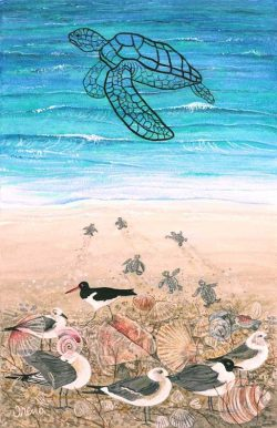 Don't Look at the Turtles! by Trena McNabb