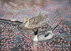 Pedals and Pintails by Lee Mims