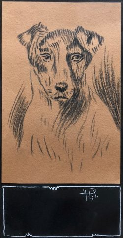 Portrait of a Terrier by Hobson  Pittman