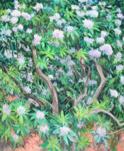Reynolda Rhododendron Triptych Panel B by Elsie Dinsmore Popkin (1937-2005)