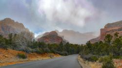 Road to Boynton Canyon by Sandra Mae Jensen