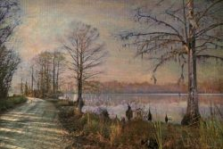 The Road to Sans Souci by Watson  Brown