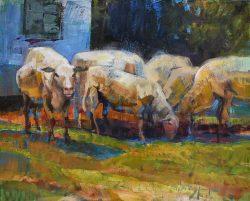 Rural Raiders by Trey Finney