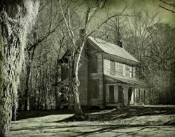 Sleepy Hollow on the Old Mill Creek by Watson  Brown