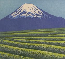 Tea Fields and Mt. Fuji by Maseo Ido