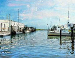 Wanchese Harbor in Summer by Watson  Brown