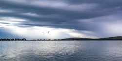 Bodega Bay by Sandra Mae Jensen