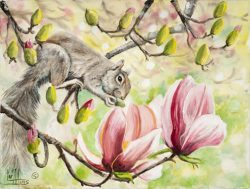 Up In The Tulip Tree II by Lee Mims